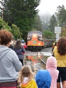 crowd watching train
